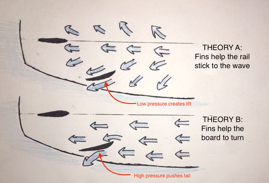 THEORY A: The fins work as a hydrofoil, creating lift that would suck the board downwards in this image. THEORY B: The fins direct water outwards, pushing the tail up in this image